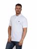 model wearing high quality white polo shirt