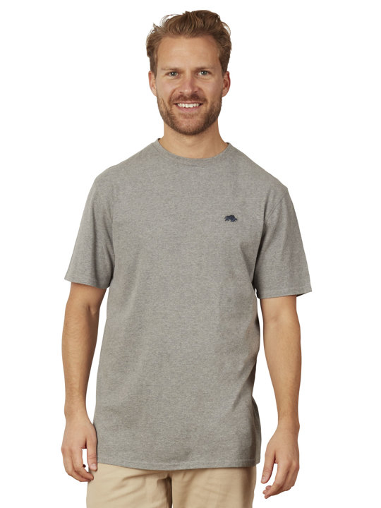 Model wearing High quality grey t-shirt
